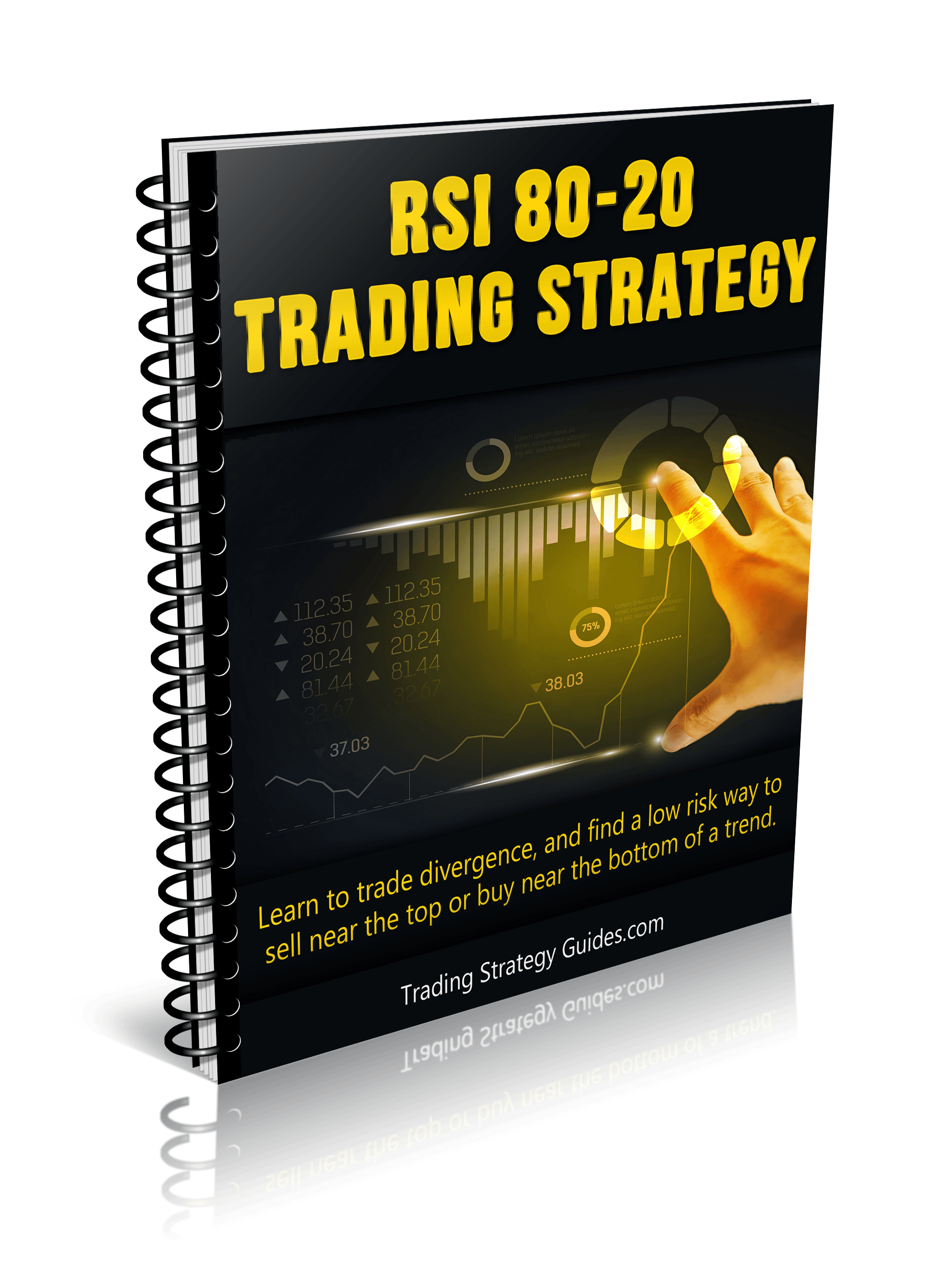 RSI-80-20-cover.png